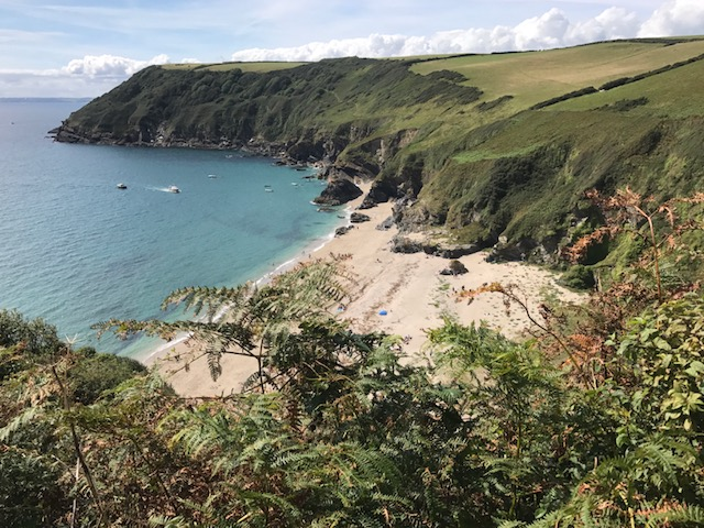Lantic Bay from clifftop